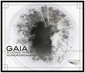 Gaia - Our Home by AJHege