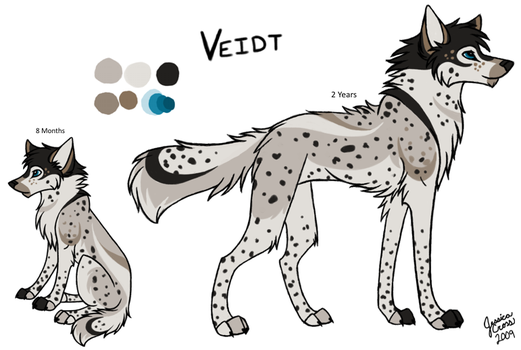 Veidt - Reference Sheet by VerdictAfterward