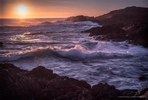 Tomorrow is another day(Ucluelet, BC Canada) by StefanieHarronPhotos