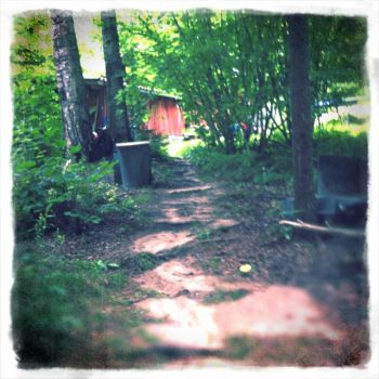 Path beind the cabin by Fazerina