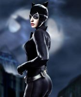 New AH Catwoman by Valor1387