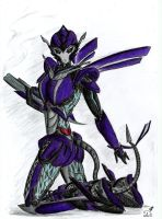 TFP-Evaison colored by Evaison