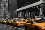 Yellow Cabs by Lionpelt-66