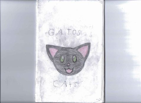 Gatos cover page by VeronicaPrower