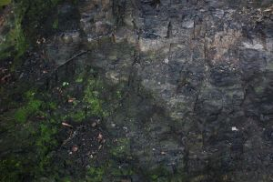 Rock texture by Peewee1002-Stocks