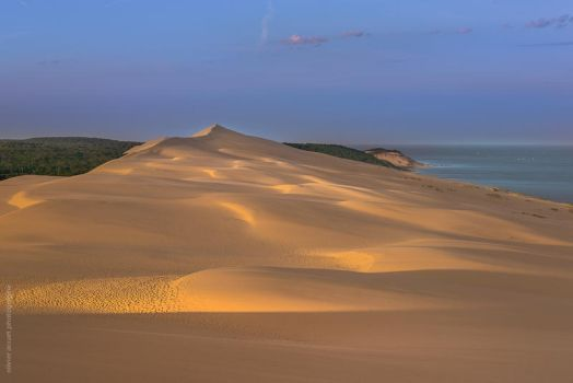 Dune ~ Shadows birth by OlivierAccart