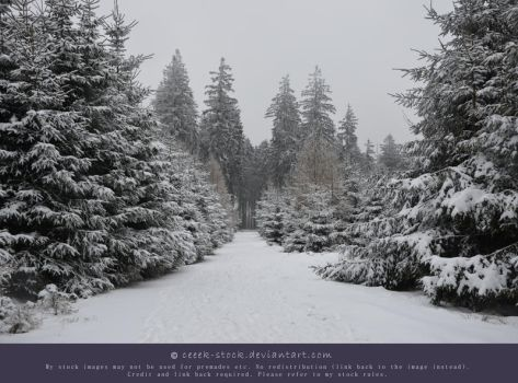 Wintertime 8 - Path by ceeek-stock