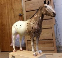 Chalky Breyer Appy Performance horse by pookyhorse