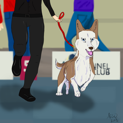 Chaos at the world dog show  by brigetmiget