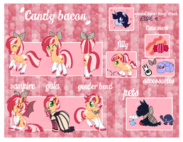 NEW UPDATED Candy Bacon Ref sheet by Doodleshire
