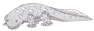 Crypt068A Giant Salamander by DinoHunter2