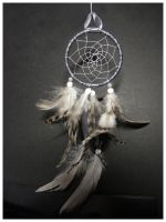 Gray Shades - Dreamcatcher by SaQe