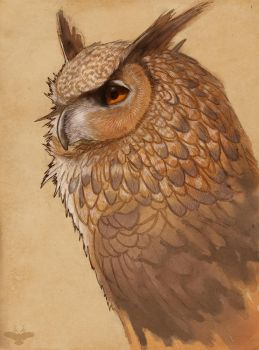 Hibou by Bluecrow10