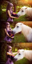 Fire Emblem Awakening - Sumia feeding the pegasus by Calssara