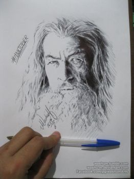 Gandalf for Inktober day03 by Washu-M