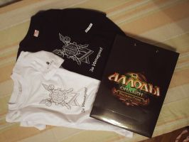 T-shirts with the party Allods Online by aldsman