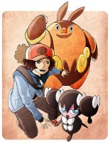 Pokemon: Trainer Black