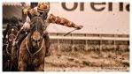 A Day At The Races -Charge by AndersStangl