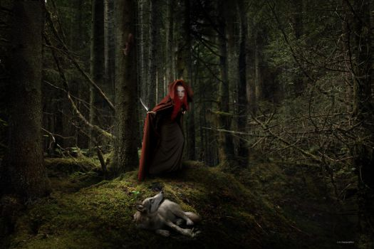 The true story about Little Red Riding Hood by lupographics