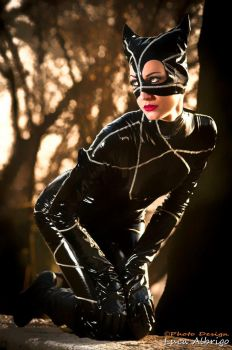 Catwoman pride by Bewitchedrune