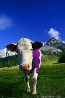 Milka Cow by miki3d
