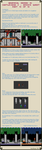 Graphical Design in Castlevania 2 - Part 10 of 10 by Cyangmou