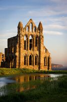 Whitby X by cardinal