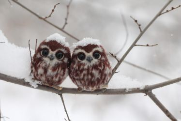 Brooch Owlet by Irentoys