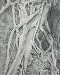 Drawing - *Roots* by Denish-C