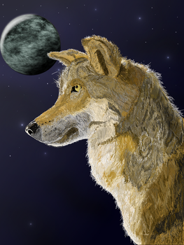 Nighttime Wolf by TheArtistThomas