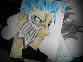 Grimmjow - Bleach by IrinaMartis