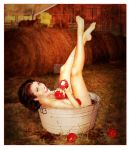Apple Bucket Pin-up by Shaelynn