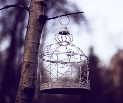 Hanging Cage by blueangel676