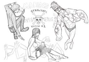 PM1-StrawHats Edition1 by l3reezer