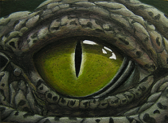 Crocodile Eye by MidgarZolom