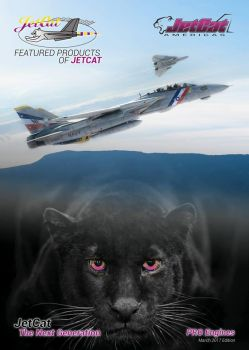 Artworks for jetcat 2017 catalog by rOEN911