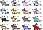 [Open] [cheap]  Cat Adoptables [13/16] by NewAdopts666