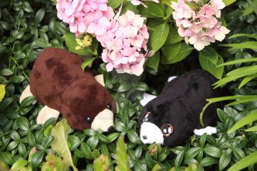 Cute little mole plushies by SugarcubeCherry