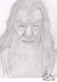 Gandalf the Grey by Arqenloce
