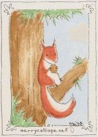 Red Squirrel by coyohti