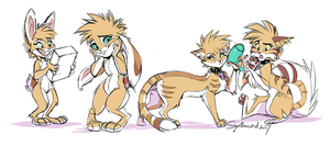 Buns and cats by Synthucard