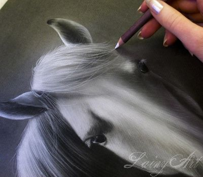 White Mare - Charcoal WIP by secrets-of-the-pen