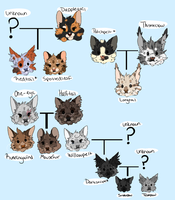 revised thunderclan tree part 1 by sharkphobia