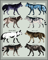 Wolf Adopt chart - 1 left by AzureHowlShilach