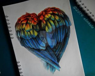 Parrot Heart by elinkalo