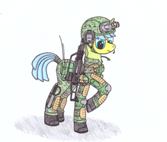Military-mare by ZoCidem