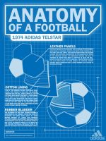 Anatomy of a Football by ajspring0019