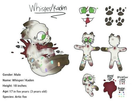 Whisper/ Kaden new oc's ref sheet and backstory by Journeyjj