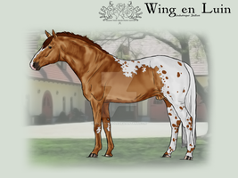 OVEC Wing en Luin by SageSinRiddle