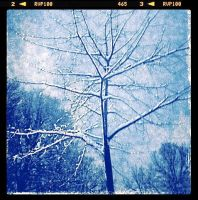 Blue filter with filmstrip effect by ycrad64
